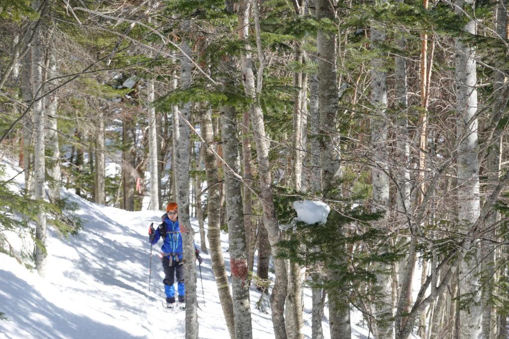 残雪期・日光白根山・七色平から登山口へ