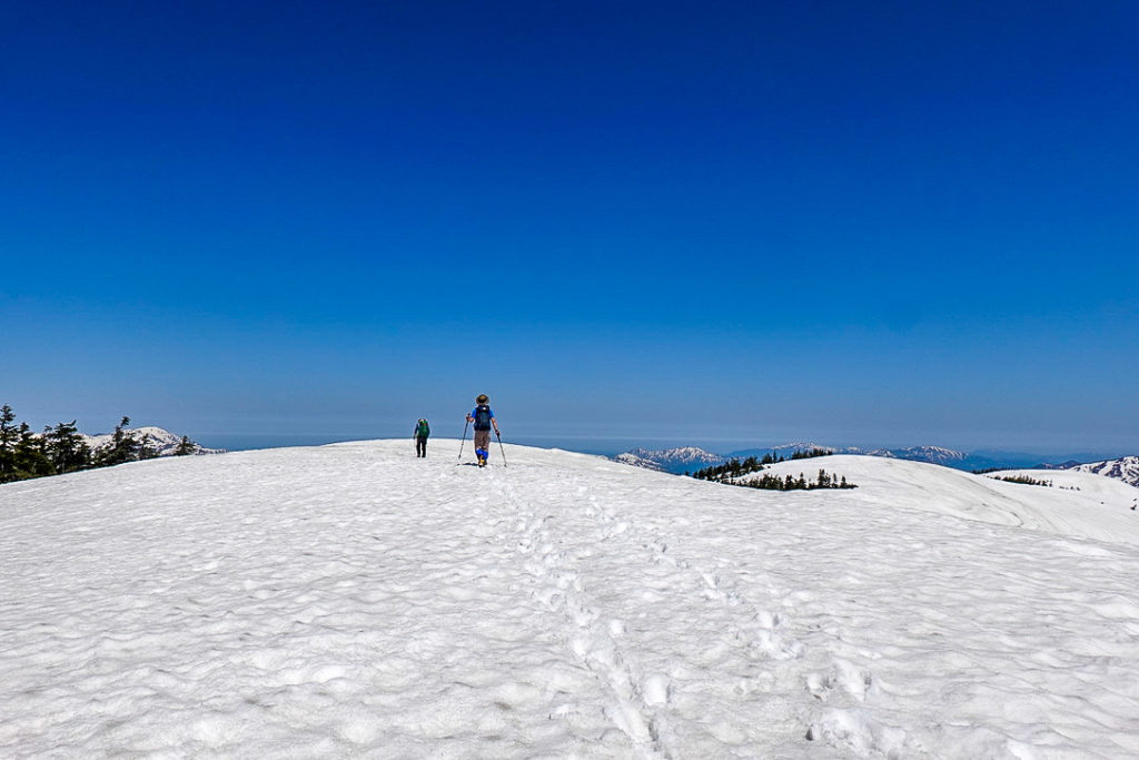 残雪期・会津駒ヶ岳・どこまでも続く白い尾根