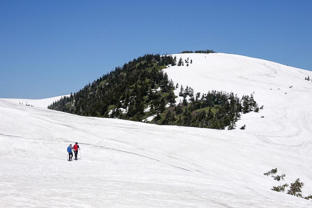 残雪期・会津駒ヶ岳・山頂へと向かう登山者