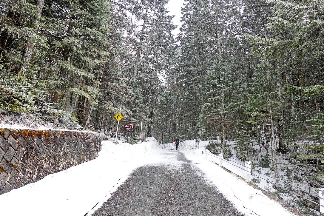 残雪期・甲斐駒ヶ岳・北沢峠入口