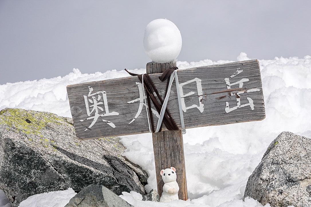 残雪期・奥大日岳・奥大日岳山頂と雪だるま