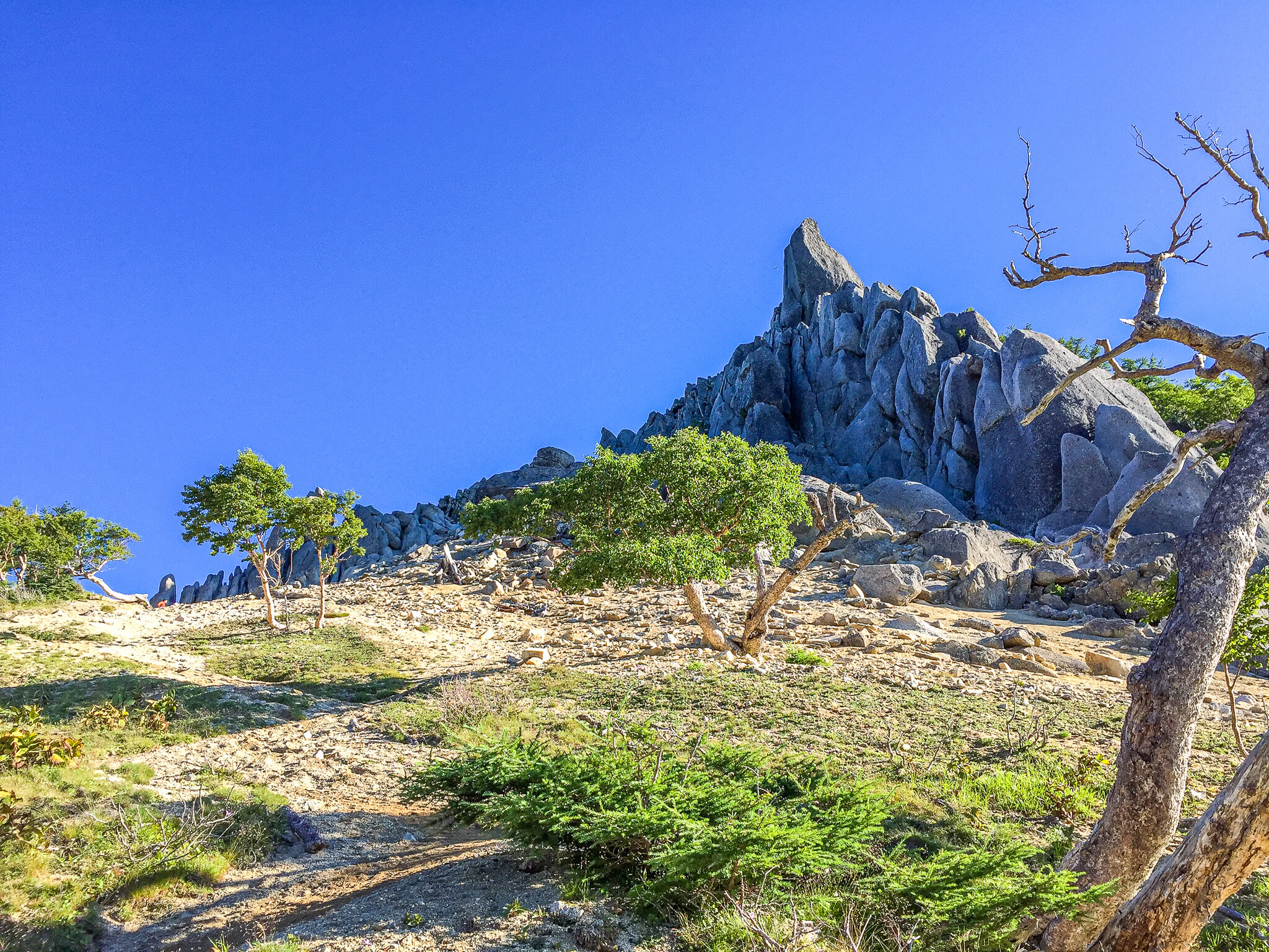 鳳凰三山・地蔵岳のオベリスク(地蔵仏)