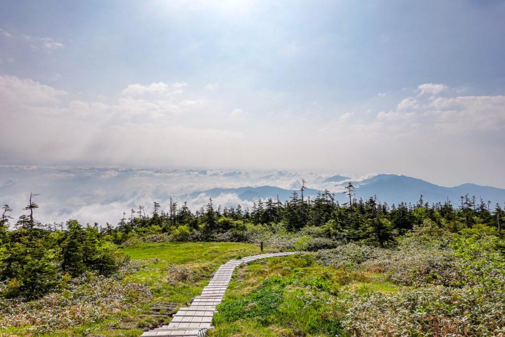 苗場山・中ノ芝から雲海を眺める