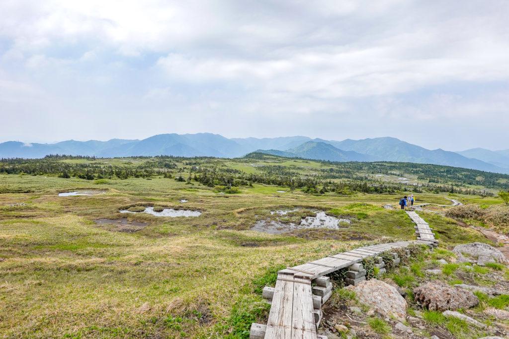 苗場山・山頂の湿原と木道歩き、残念ながら雲多め