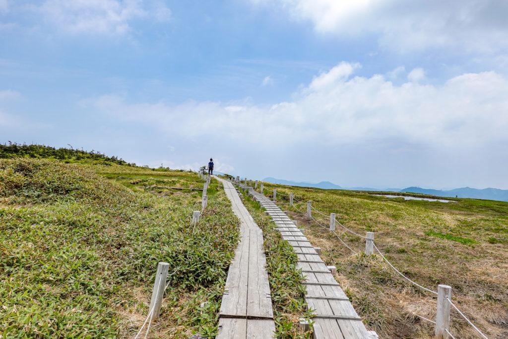 苗場山・山頂の木道