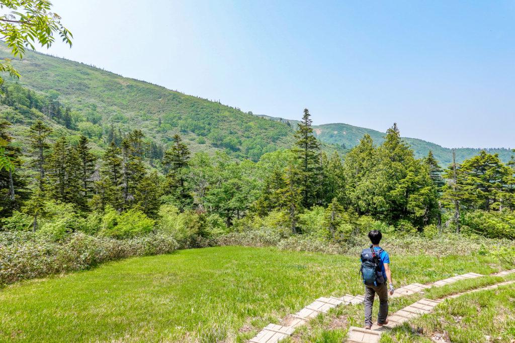 苗場山・祓川コースの木道くだり3