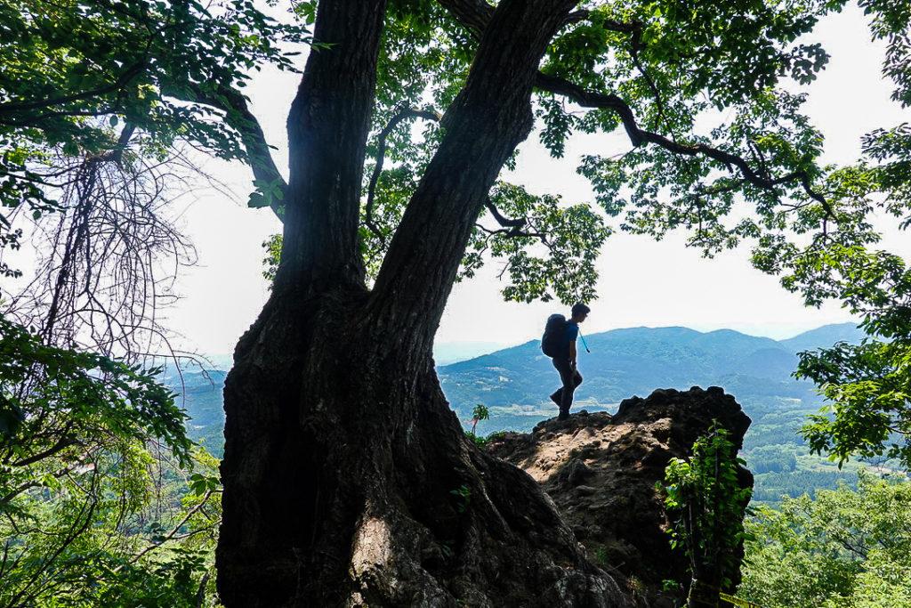 妙義山・表妙義(白雲山、相馬岳)・中間道・第一見晴