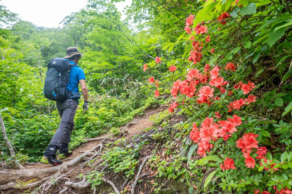 雨飾山・雨飾高原キャンプ場から荒菅沢を目指す2