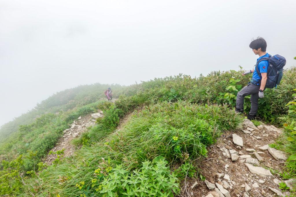 雨飾山・笹平から荒菅沢へ