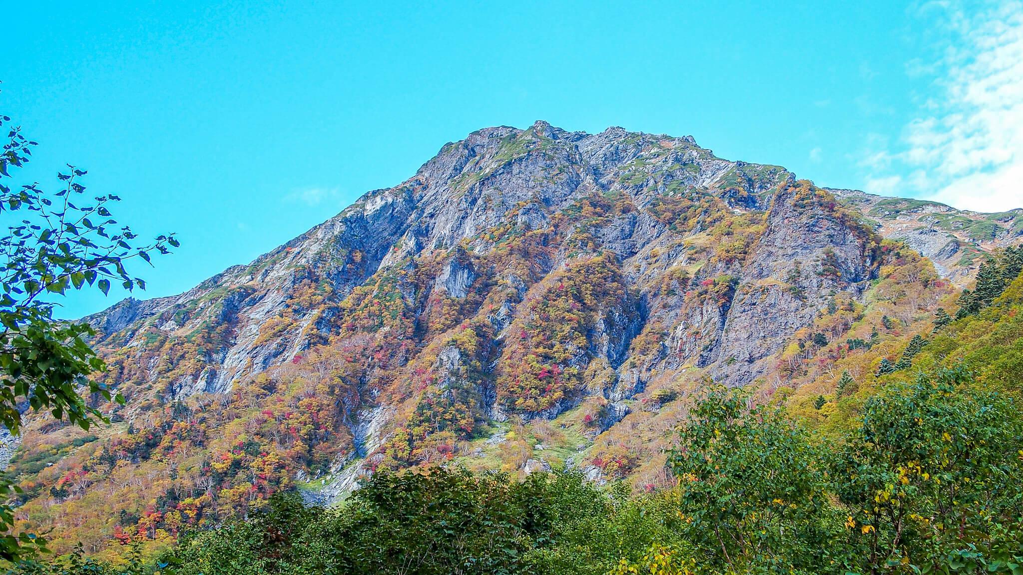 北岳・大樺沢からの北岳