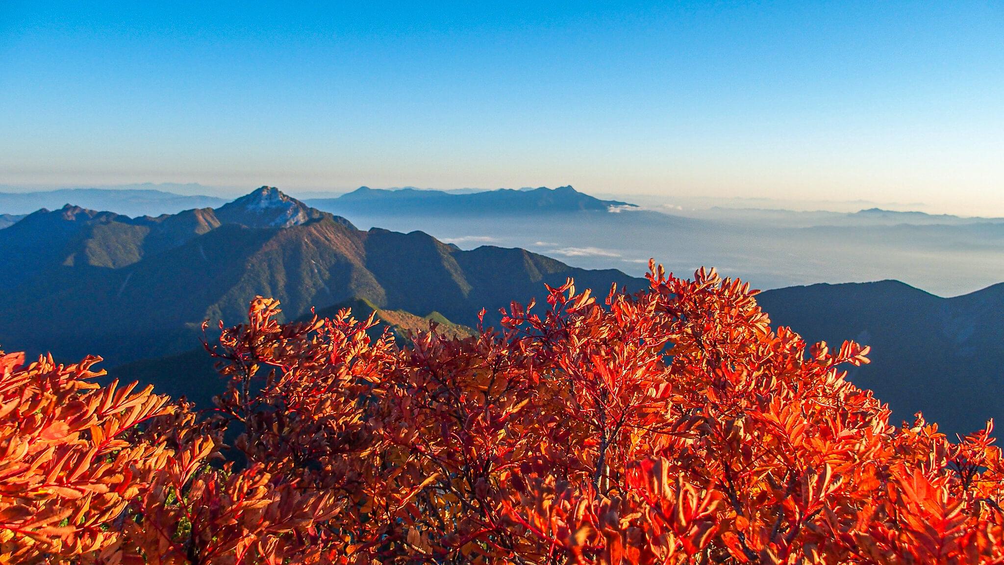 北岳・紅葉と甲斐駒ヶ岳と八ヶ岳