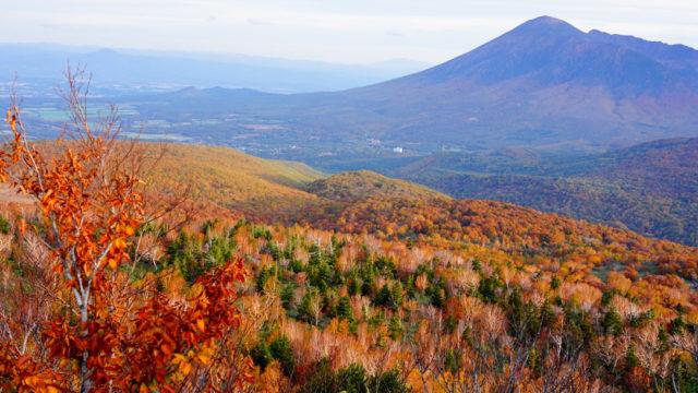 八幡平からの紅葉の岩手山