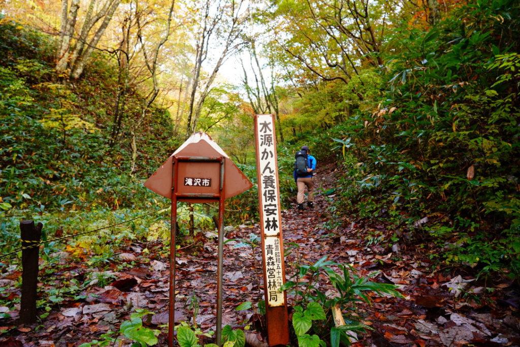 岩手山・柳沢コース前半は樹林帯