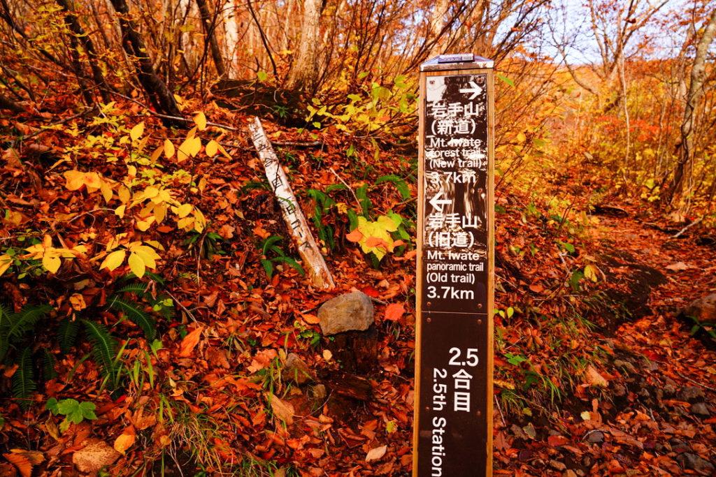 岩手山・2.5合目(新道・旧道分岐)