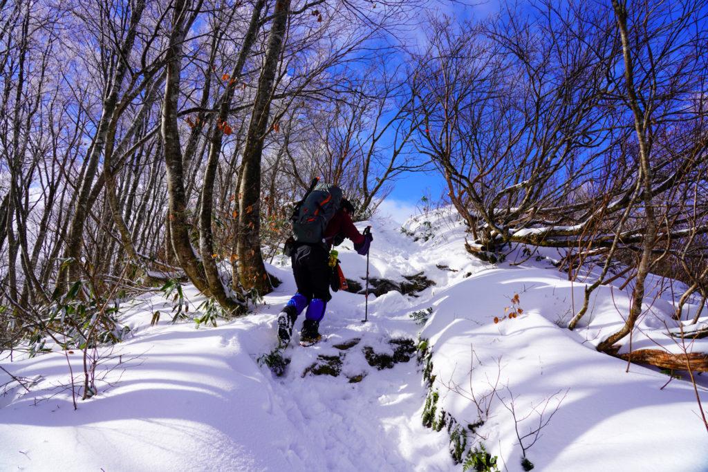 積雪期・荒島岳・シャクナゲ平前の急登
