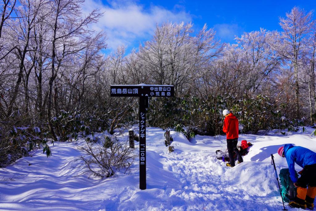 積雪期・荒島岳・シャクナゲ平