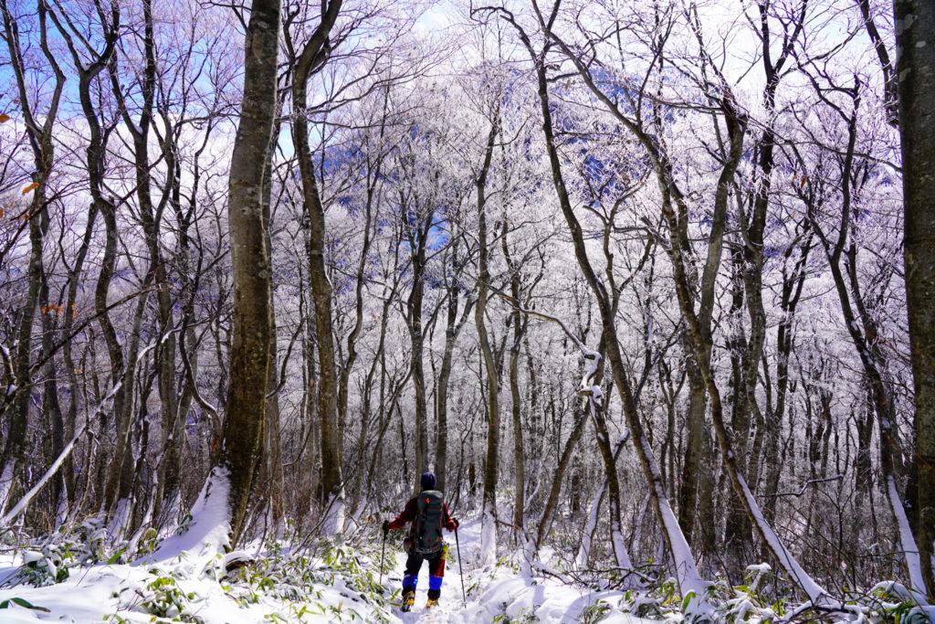 積雪期・荒島岳・シャクナゲ平から荒島岳へ
