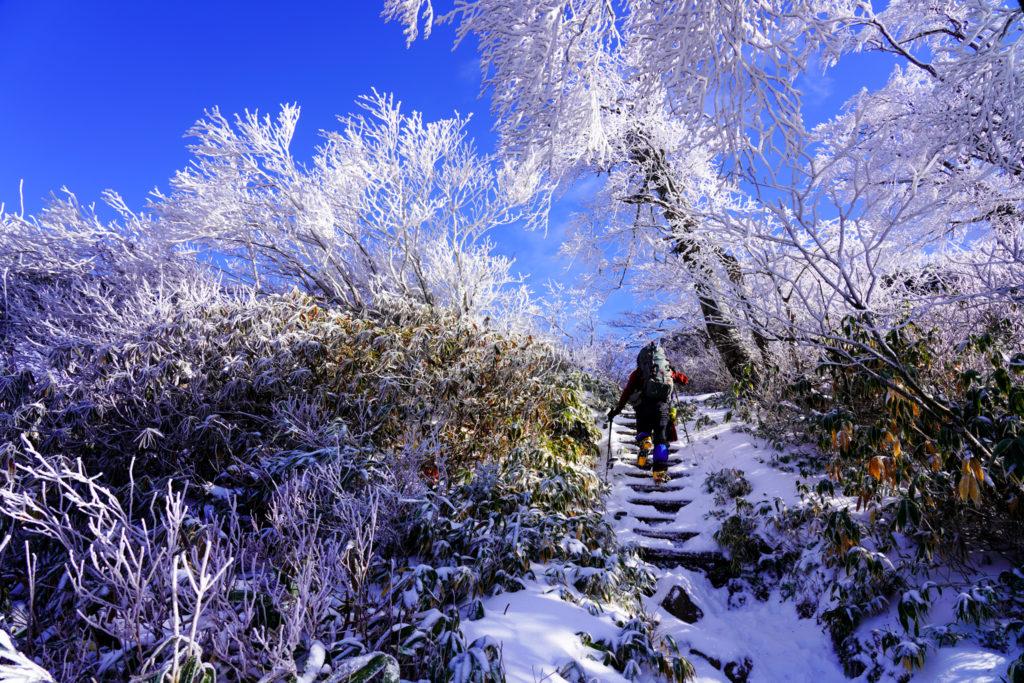 積雪期・荒島岳・霧氷の急登