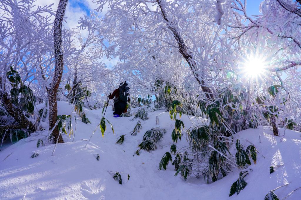 積雪期・荒島岳・霧氷のアーチを越えて