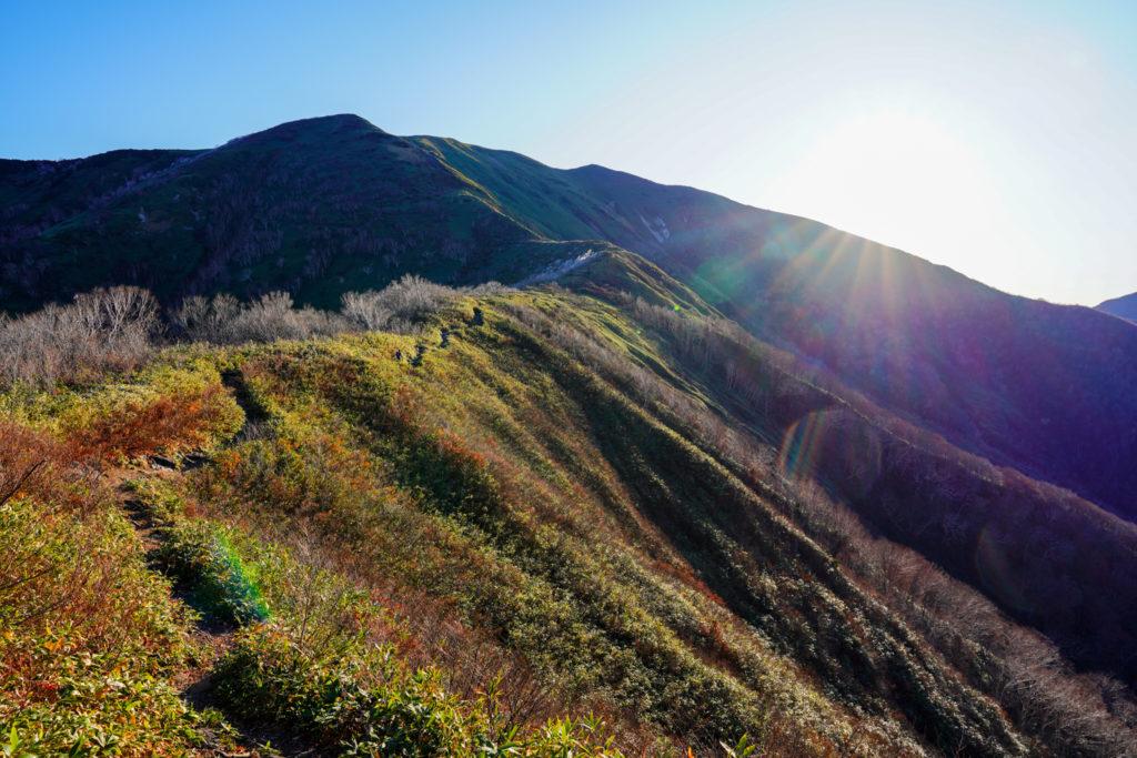 平標山・仙ノ倉山・松手山から見る平標山