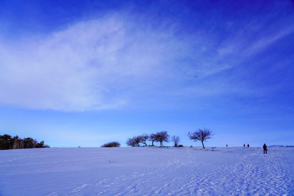 厳冬期・四阿山・雪原