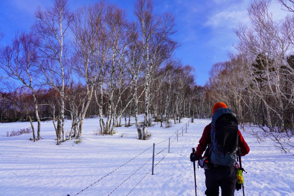 厳冬期・四阿山・牧柵に沿って歩く登山道