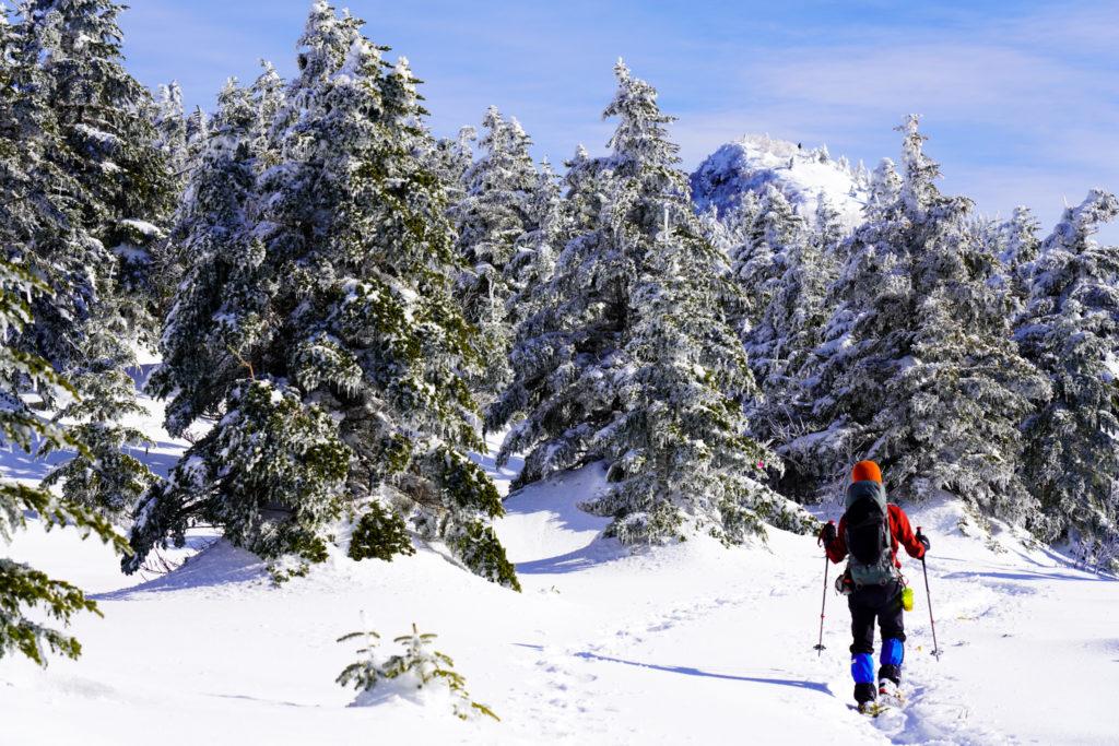 厳冬期・四阿山・再び樹林帯へ