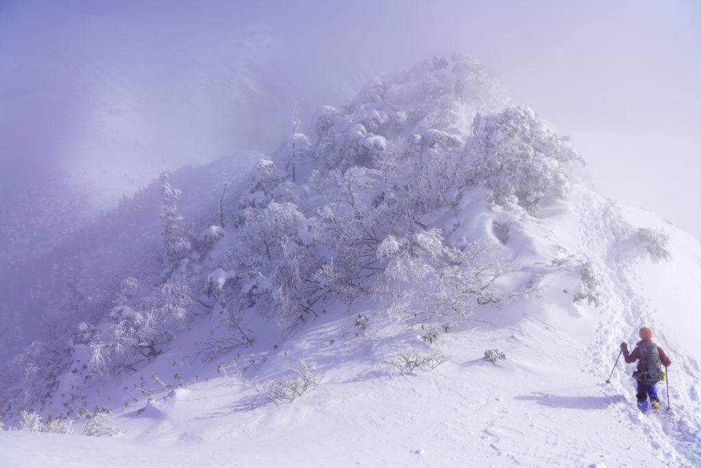 厳冬期・武尊山・剣ヶ峰山・モコモコの木