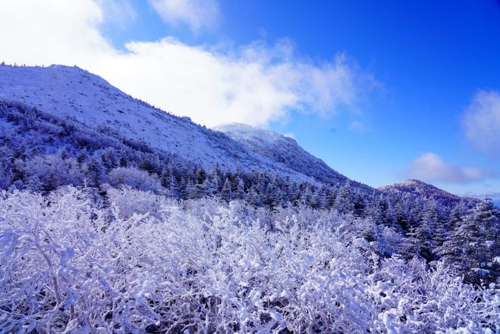 厳冬期・天狗岳・天狗岳を仰ぐ