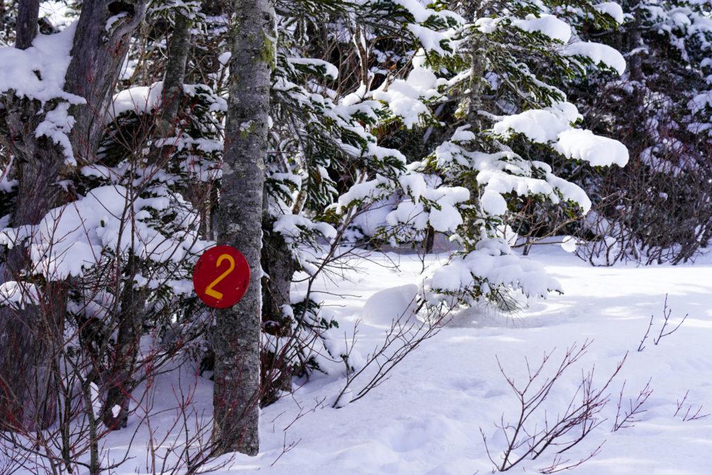 厳冬期・乗鞍岳・番号が振られています