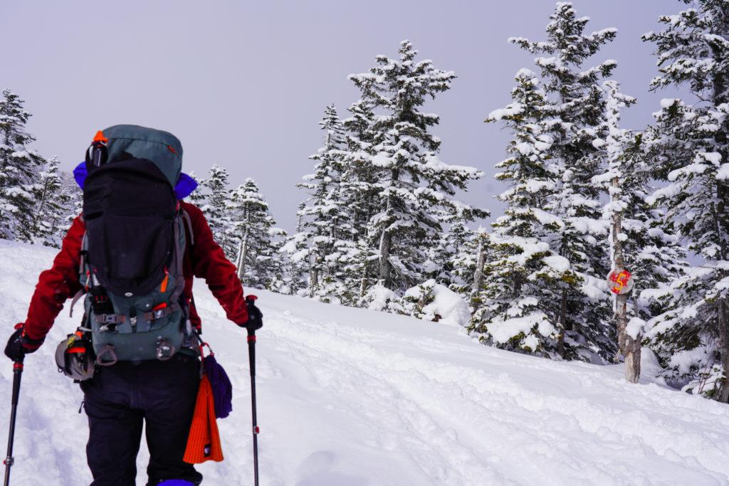 厳冬期・乗鞍岳・5の看板