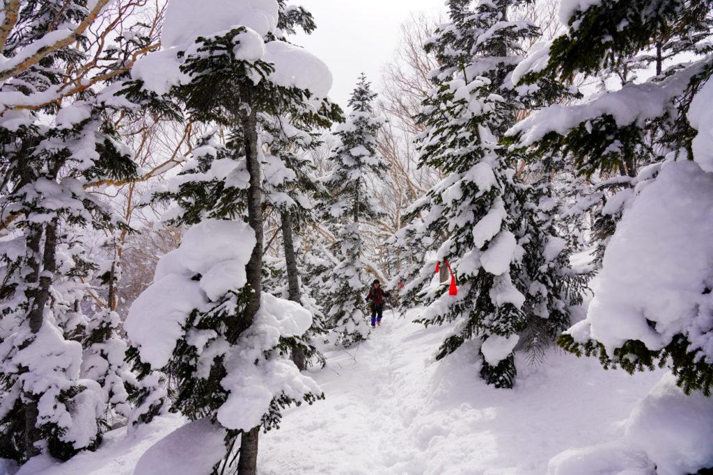 厳冬期・乗鞍岳・位ヶ原山荘へ