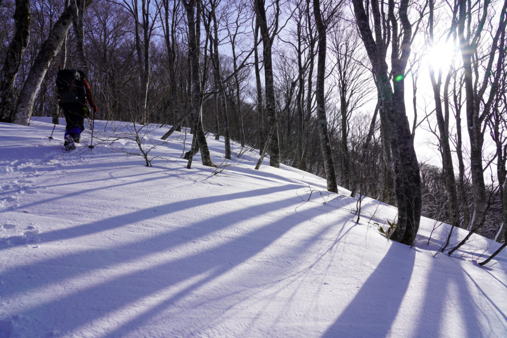 残雪期・東谷山・日白山・樹林帯を抜けて