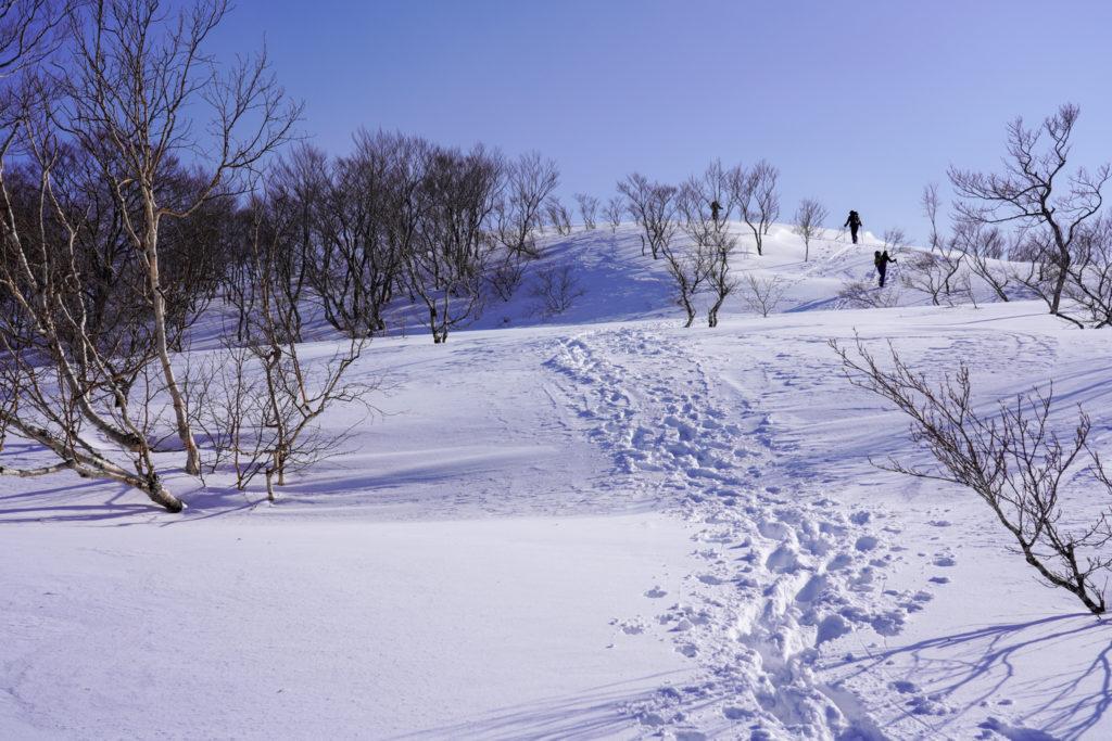 残雪期・東谷山・日白山・東谷山山頂へ2