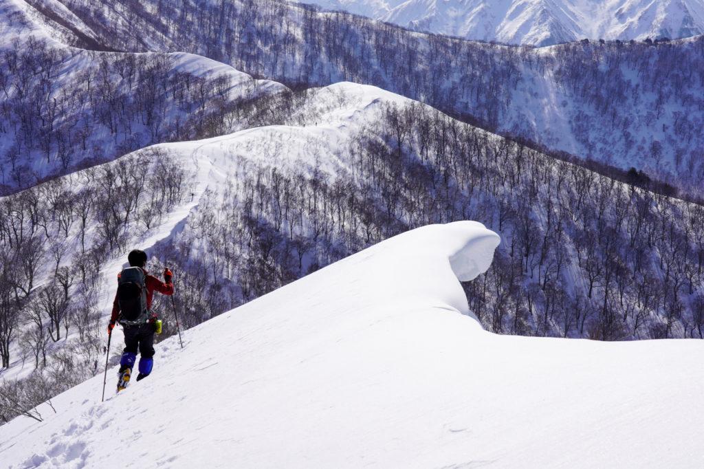 残雪期・東谷山・日白山・東谷山から日白山へ