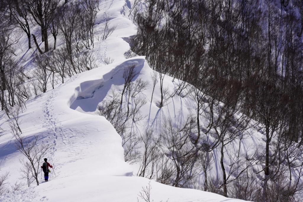残雪期・東谷山・日白山・東谷山から日白山へと続く雪庇の稜線