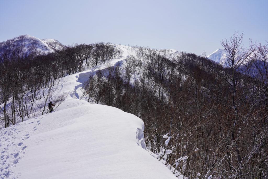 残雪期・東谷山・日白山・雪庇は続くよどこまでも