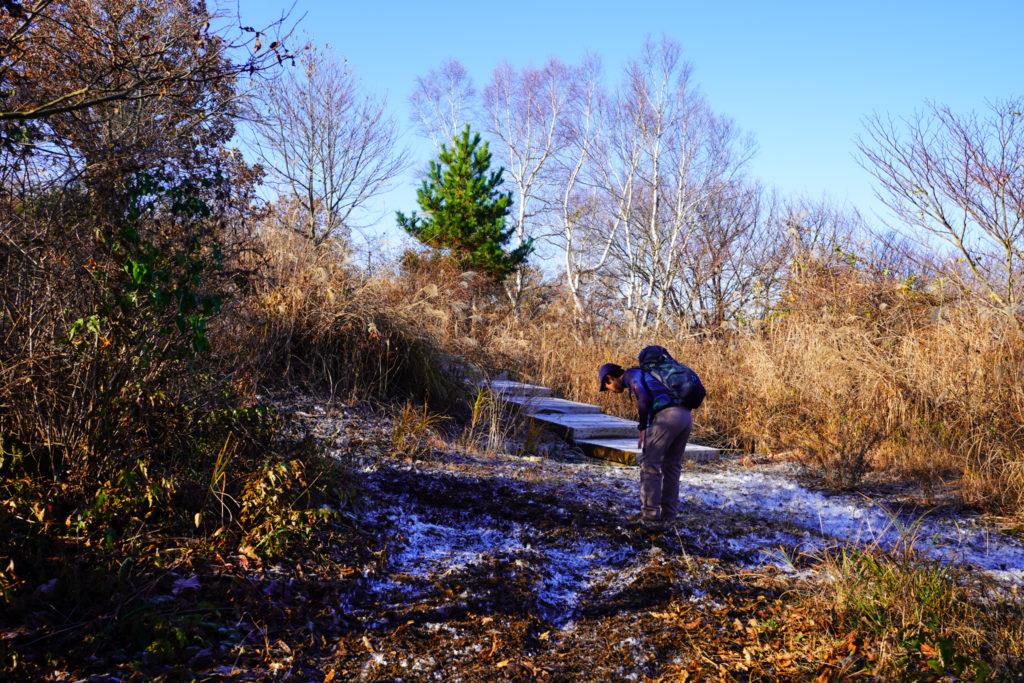 陣馬山・景信山・高尾山・霜が降りている