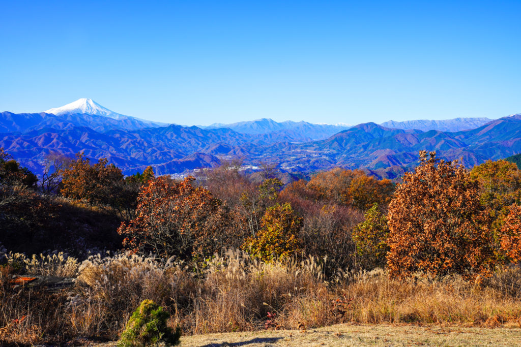 陣馬山・景信山・高尾山・陣馬山から見る富士山