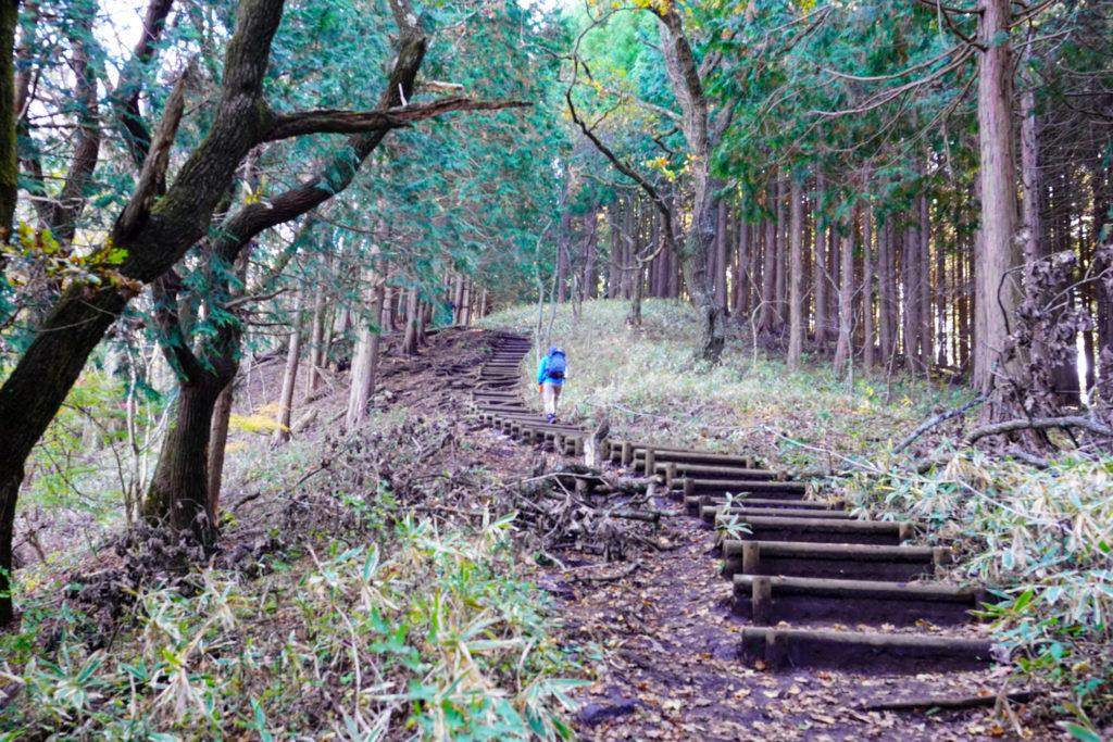 陣馬山・景信山・高尾山・木の階段を登る