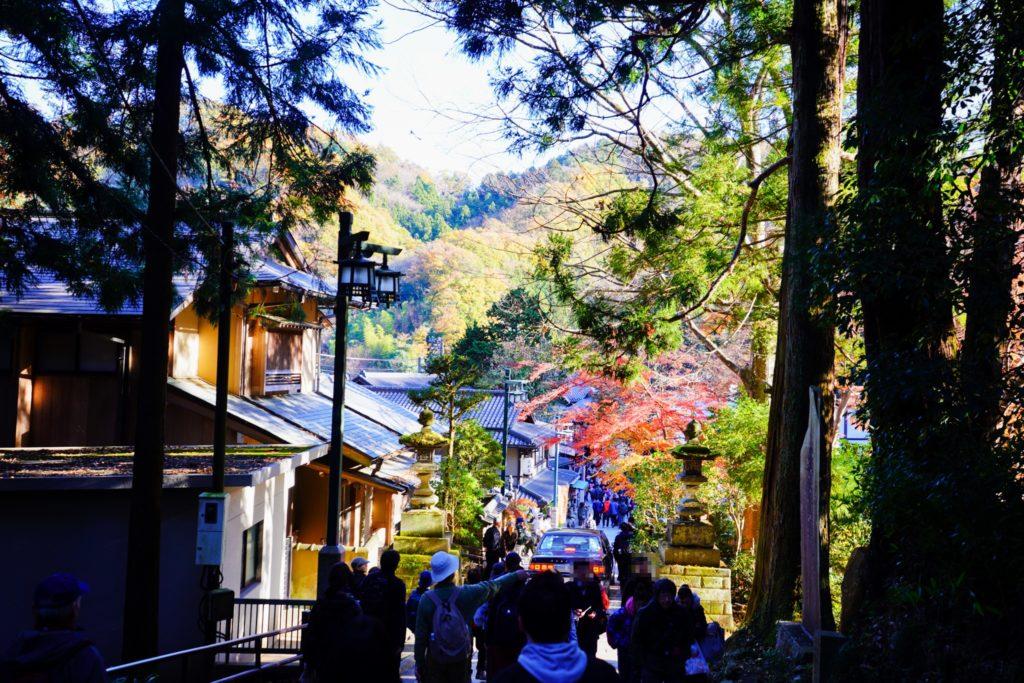 陣馬山・景信山・高尾山・ケーブルカー清滝駅・リフト山麓駅