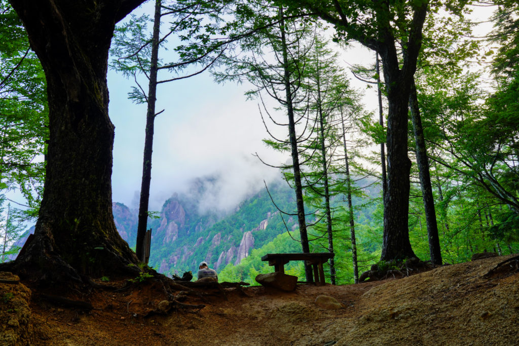 金峰山・木々の間から瑞牆山が・・・見えない