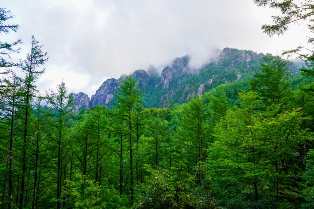 金峰山・木々の間から瑞牆山が・・・チラリズム