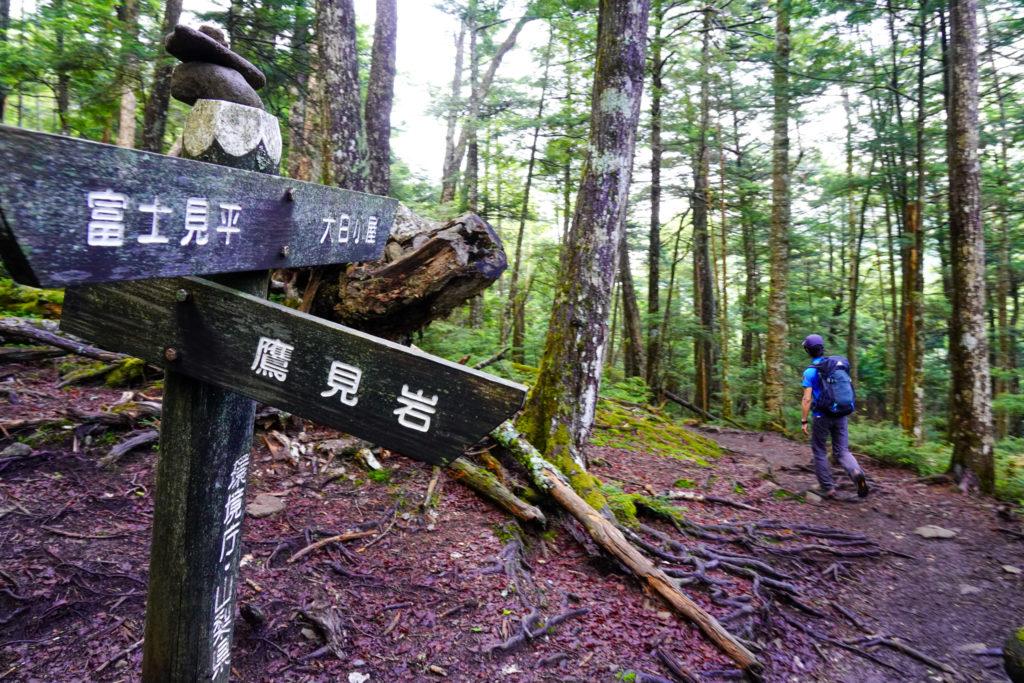 金峰山・鷹見岩の分岐