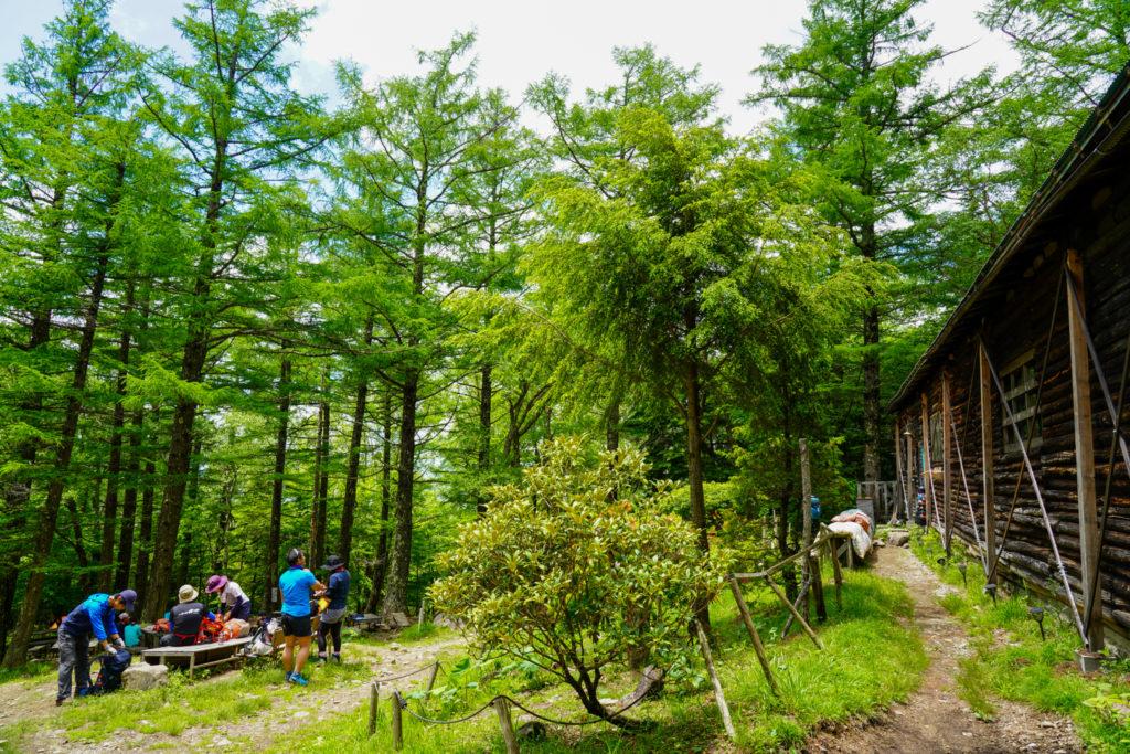 金峰山・緑が濃い富士見平小屋