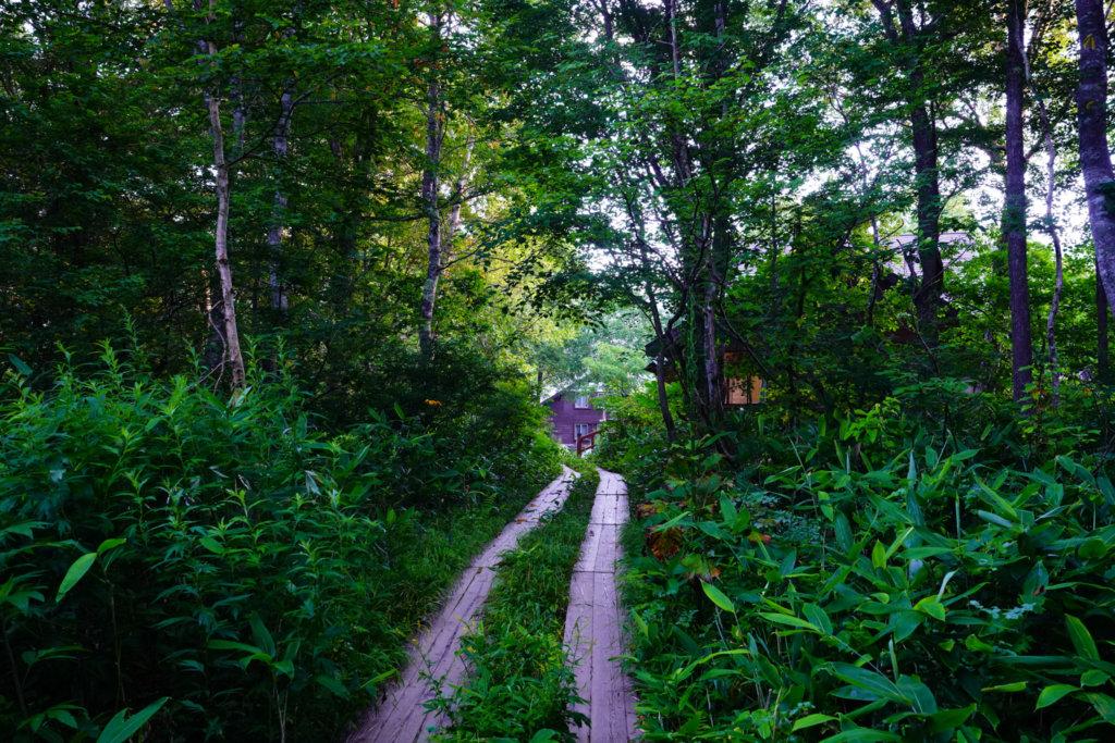 至仏山・尾瀬ヶ原・鳩待峠から山ノ鼻へと木道を行く