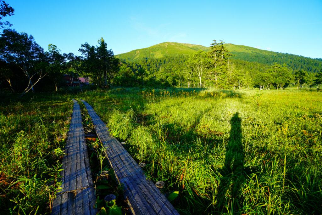 至仏山・尾瀬ヶ原・朝の尾瀬ヶ原から見た至仏山