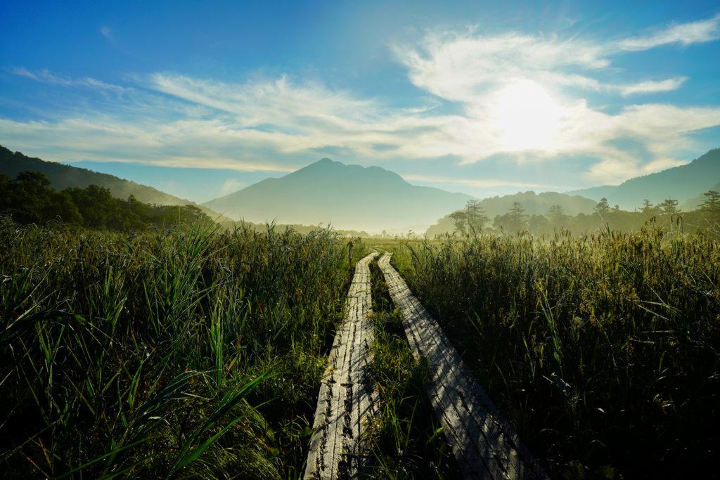 至仏山・尾瀬ヶ原・8月のススキと尾瀬ヶ原