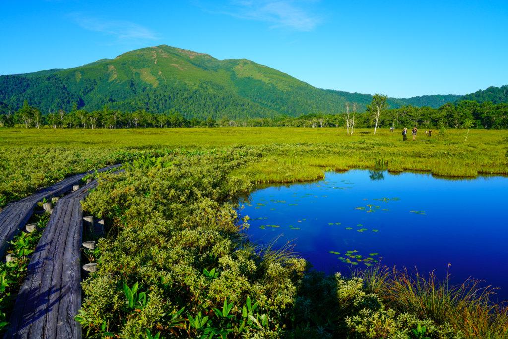至仏山・尾瀬ヶ原・上田代から見る至仏山