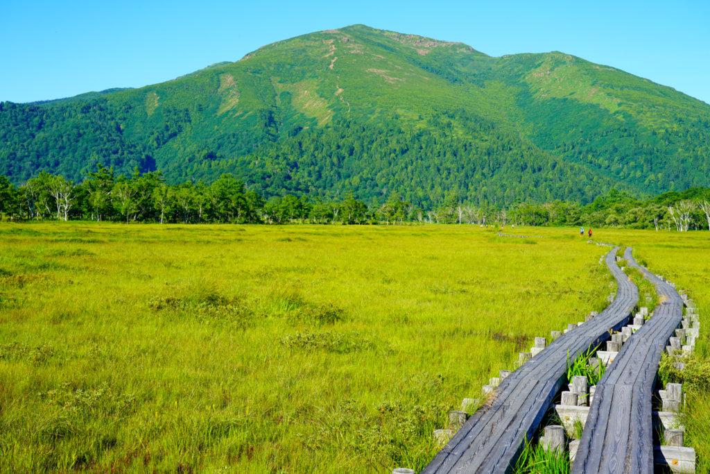至仏山・尾瀬ヶ原・8月の至仏山